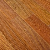 Providence Exotics Collection