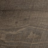 Tidewater Collection
