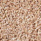 Patriot Mills Carpet