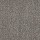 Philadelphia Commercial Carpet Tile: Chatterbox Tile Chit Chat