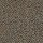 Philadelphia Commercial Carpet Tile: Swizzle Tile Hide N Seek