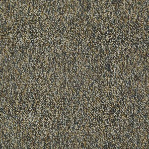 Franchise Ii 26 Philadelphia Commercial Shaw Carpet