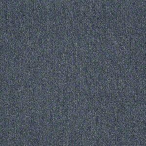Neyland Iii 20 Philadelphia Commercial Shaw Carpet