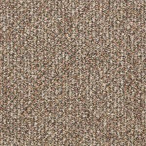 Sp012 Philadelphia Commercial Shaw Carpet New Spice