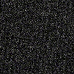 Succession Ii Shaw Indoor Outdoor Carpet Shaw Carpet