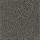 Philadelphia: XV064 Dried Fern