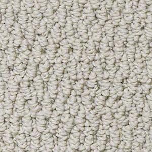 Trust Me Philadelphia Shaw Carpet Fossil