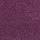 Queen: Matador Grape