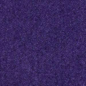 Matador Royal Lilac