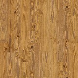 Cloudland Pine