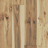 Exquisite