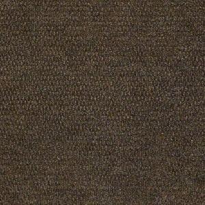 Bedecked Shaw Indoor Outdoor Carpet Shaw Carpet Embers