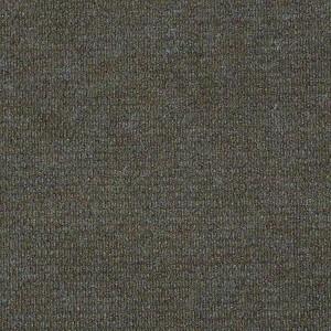 Bedecked Shaw Indoor Outdoor Carpet Shaw Carpet