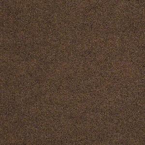 Windsurf Shaw Indoor Outdoor Carpet Shaw Carpet