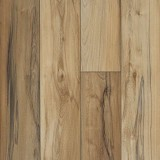 Titan HD Plus Plank