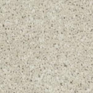 Xv640 Philadelphia Shaw Carpet Glamorous
