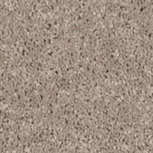 Xv640 Philadelphia Shaw Carpet Wild Dune
