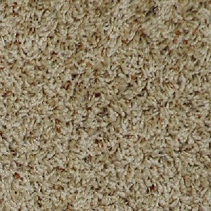 Extra Point 15 Southwind Carpet Home Team