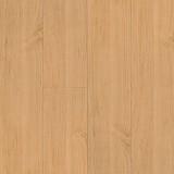 American Maple