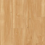 Latitudes