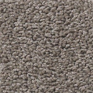Beverly Grove Tuftex Shaw Carpet Simply Taupe
