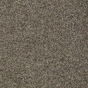 Good Day Sunshine Tuftex Shaw Carpet Charcoal Heather