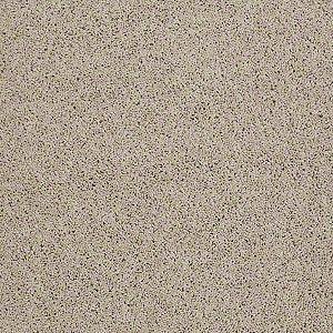 Hancock Park Tuftex Shaw Carpet Agate