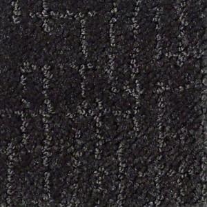 Happy Hour Tuftex Shaw Carpet Meteorite
