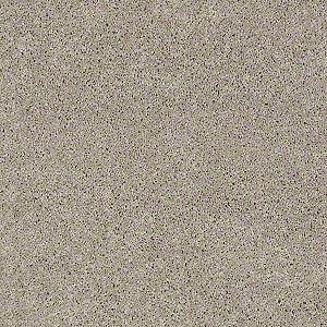 Serendipity I Tuftex Shaw Carpet Silver Leaf