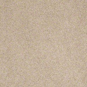 Serendipity Ii Tuftex Shaw Carpet Agate