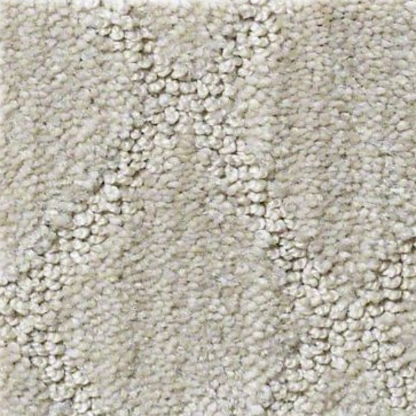 Sonora Sand Shell